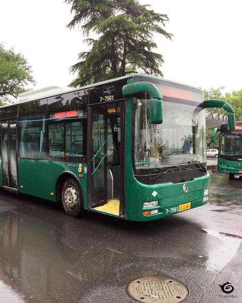 510バス